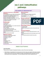 Liver Phases Detox Paths 3