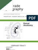 Antegrade Pyelography
