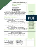 Curriculum Vitae Modelo 012 Claro Postulante