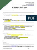 Pityriasis Rosea Fact Sheet