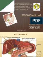 seminario patologia biliar
