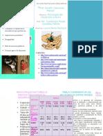 Indicadores Nacionales e Internacionales Del Desarrollo Humano Asociados a La Educación