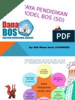 Biaya Pendidikan Model Bos (Sd)