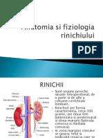 hAnatomia Si Fiziologia Rinichiului Curs 3