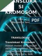 Margaretha Tania -Translokasi Dan Kelainan Kromosom.ppt