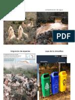 Perdidas de Especiecontaminacion Del Agua.docx Ibsa