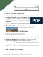 04-Los-ecosistemas.doc