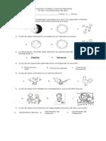 Evaluación Unidad 4 Ciencias Naturales.doc