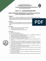 Mike Huaman-directiva No 003 2016