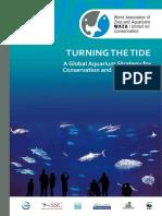 Aquarium Strategy