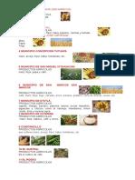 Productos Agricolas de Los Municipios de San Marcos