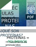 Diapositivas - Proteínas y Enzimas