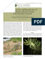 Campos, Zilca e Desbiez - 2013 - Structure of Size and Reproduction of Green Iguanas (Iguana Iguana) in the Brazilian Pantanal