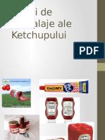 Tipuri de Ambalaje Ale Ketchupului