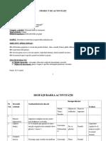 PROIECT DE ACTIVITATE DLC evaluare.docx