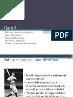 Patologia Medulara 2