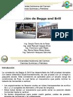 EXPO Beggs and Brill ULTIMA