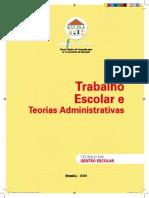 10 Trabalho Escolar e Teorias Administrativas Versao 2010ava