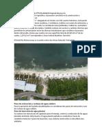 Riu Riviera Maya Consulta