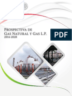 Prospectiva Gas Natural Gas LP 2014