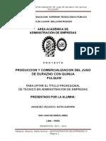 proyectoPULQUINIMP
