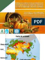 Agricultura conservativa