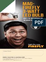 Firefly Lighting Flyer