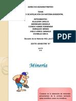 Recurso+Via+Administrativa Caso Ambiental Minero