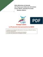 Ensayo Sobre Unidad 5- Constitución de la República Bolivariana de Venezuela, el Derecho Interno y el Derecho Internacional. - La Corte Interamericana de los Derechos Humanos. - La Corte Penal Internacional. El Estatuto de Roma
