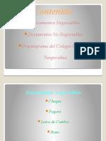 29) Diapositivas Del Organigrama y Doc. Negociables y No Negociables