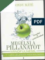 Dr. Szondy Máté - Megélni a pillanatot{up haltap}.pdf