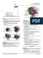 Anat 4.5 GIT Embryology Melendres