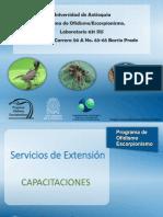 Presentacion Grupo Ofidismo Escorpionismo