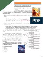 orixsas7linhasouvibraesoriginais-130618164954-phpapp02