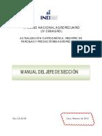 Manual Jefe de Sección INEI