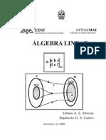 Apostila de Álgebra Lienar