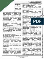 Exercicios evolução.doc
