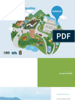 Plan de Accion de Managua