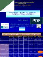 4 Querini Mercosur Junio 2008
