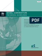 Basel Technical Guidelines