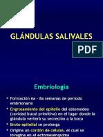 GLÁNDULAS SALIVALES