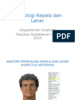 AO-K2 Osteologi Kepala Leher.ppt