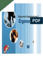 Ergonomia_15_Organizacional_2.pdf