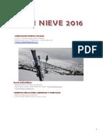2016 Plan Nieve