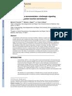 Acetilcolina in SNC