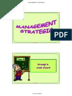 Strategia Afacerii.ppt
