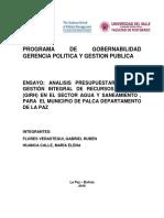 ANALISIS PRESUPUESTARIO SOBRE GESTIÓN INTEGRAL DE RECURSOS HÍDRICOS (GIRH) EN EL SECTOR AGUA Y SANEAMIENTO , PARA EL MUNICIPIO DE PALCA DEPARTAMENTO DE LA PAZ