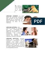 10 Tipos de Lenguaje
