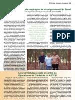 Informativo IPEF Notícias - dezembro/2009