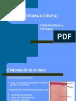 Adrenergicos download farmacos pdf
